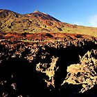Teide Summit. by MWhitham