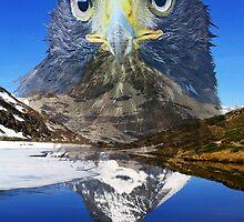 Eagle mountain by Doug McRae