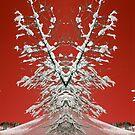 Pace invernale by Foto Kem