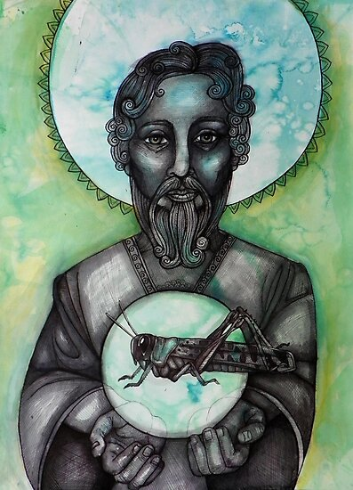 The Locust by Lynnette Shelley