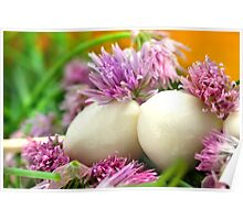 Chives Bloom and Mozzarella Poster