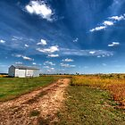Country Road by Mandy Brown