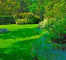 Another Garden View by john forrant