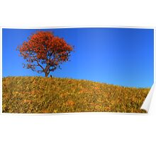 Clear Autumn Day Poster