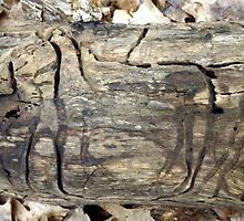 Cave Drawings by Rusty Katchmer