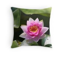 Flowering Lotus evolks zen-like Calmness Throw Pillow