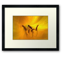 Am I in Heaven or Outer Space? Framed Print