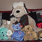 Collection of stuffed animals by Sinclere