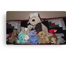 Collection of stuffed animals Canvas Print