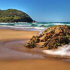 Goolawah Beach, Crescent Head, NSW by Steve Fox