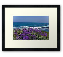La Jolla Coast IV Framed Print