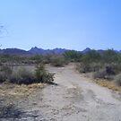 Desert Near Blythe California by Bearie23