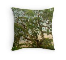The Tree Gippsland Victoria  Throw Pillow