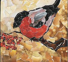 Bullfinch by Elena Naylor