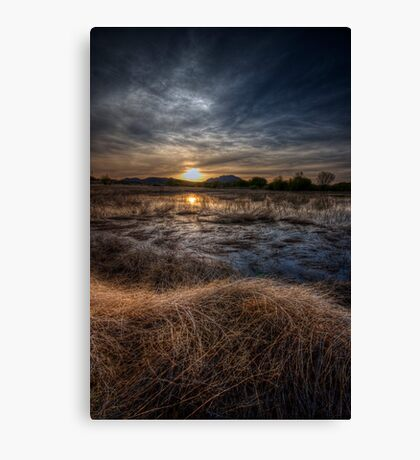 Sunset and Straw Canvas Print