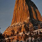 Devil's Tower Close Up by Tom Davidson