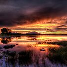 Saturated Sunset by Bob Larson