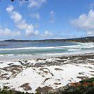Carmel Beach on a Stormy Day by Sandra Gray