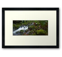 Flowing Moss - Blue Mountains NSW Framed Print