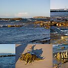 Seaside Collage by reflector