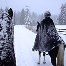 horseback in the snow by QuietRebel