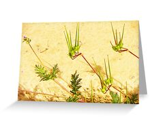 My Weeds, My Abstract Greeting Card