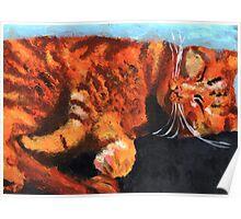 CAT CAT CAT (2) Poster