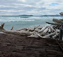 Pic Island - Lake Superior- Marathon Ontario Canada by loralea