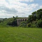 Cannington Viaduct  Uplyme by lynn carter