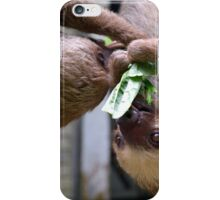 Two Toed Sloth Twins iPhone Case/Skin