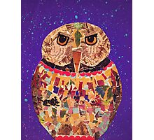 Collage Owl Photographic Print