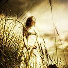She Waited by Nicola Smith