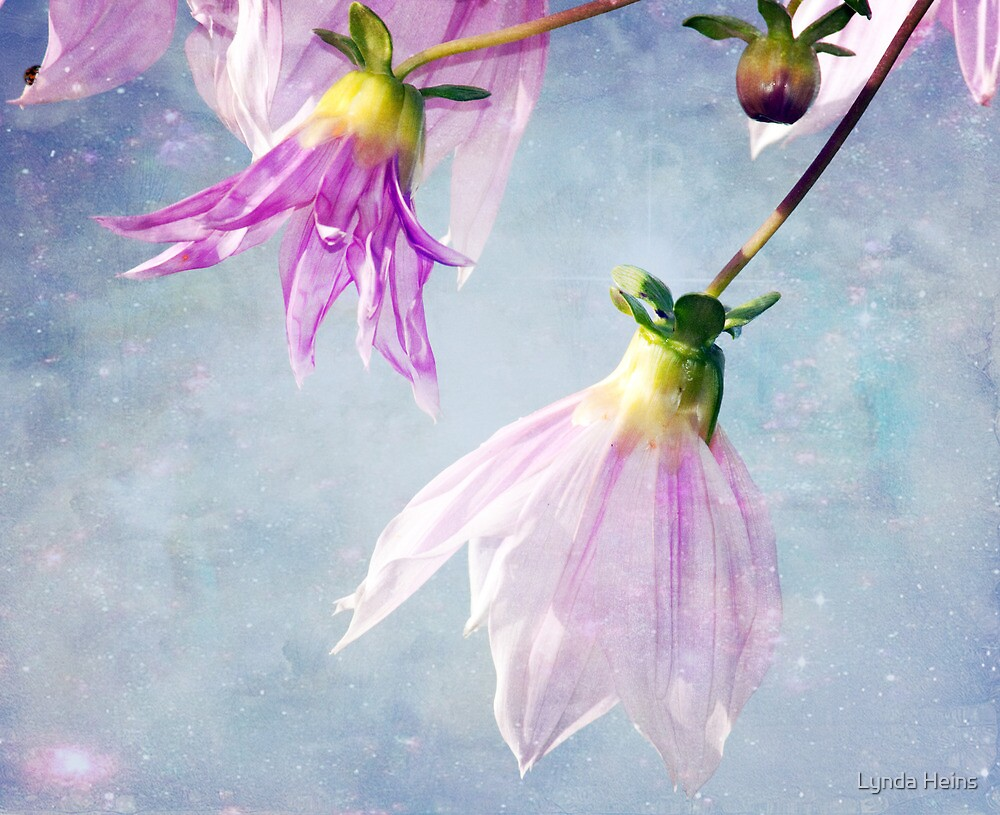 With a touch of Magic by Lynda Heins