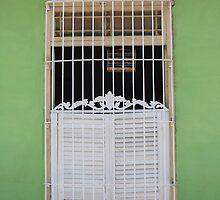 Classic Trinidad window, Cuba by fionapine