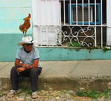 Rooster crows at window - Trinidad, Cuba by fionapine