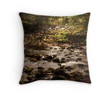 River Wharfe at Bolton Abbey 2 Throw Pillow