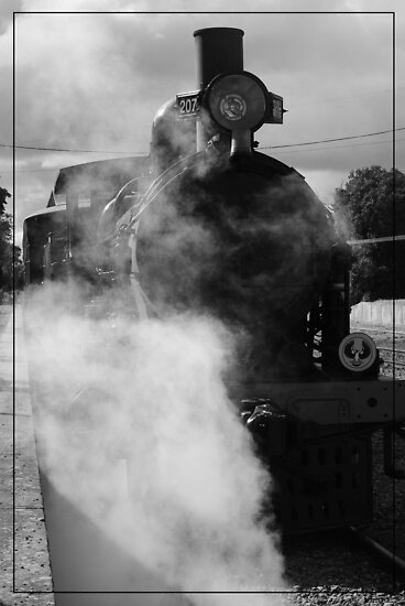 Steam Ranger At the Station by Caitlin  Photography