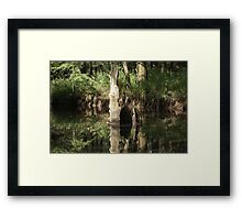 Simplicity At Best Framed Print