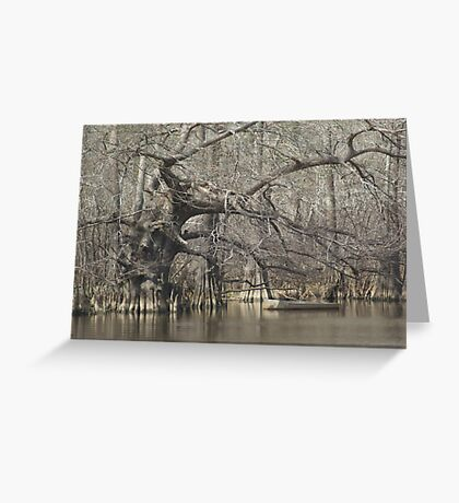 Wicked Cypress Greeting Card