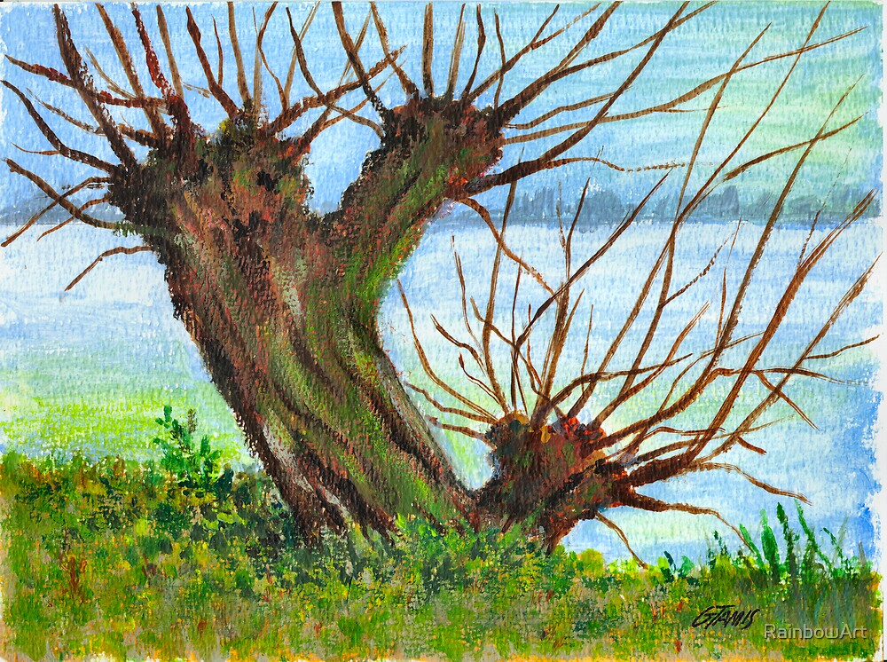 2 WILLOW TREES by RainbowArt