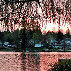 Lake Stevens by Robert  Miner