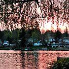 Lake Stevens by Robert  Miner