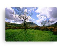 Wasdale Cumbria Canvas Print