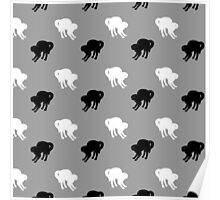 Black and White Cats Poster