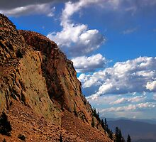 Contrasting Colors at Pikes Peak by Sean Ross