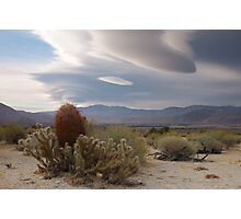 Cactus and Clouds, Owens Valley, California Photographic Print
