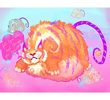 Fat Tigers Are Not Clouds Photographic Print