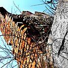 Torre del tempo by Foto Kem