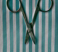 scissors by hanloufoley