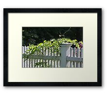 White picket fence being kissed by the sun Framed Print